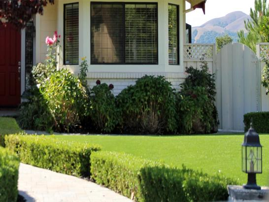 Artificial Grass Photos: Grass Carpet Jemez Springs, New Mexico Landscaping Business, Front Yard
