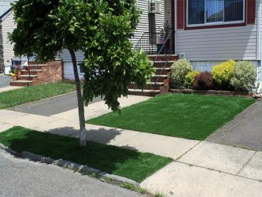 Artificial Grass Photos: Grass Carpet La Plata, New Mexico Landscape Photos, Front Yard Ideas