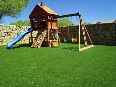 Artificial Grass Photos: Grass Carpet Salem, New Mexico Backyard Playground, Backyard Landscaping Ideas