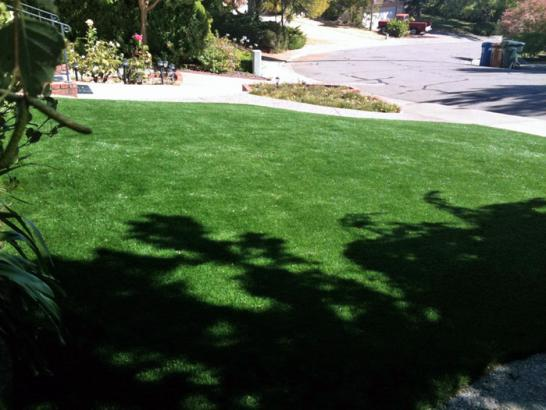 Artificial Grass Photos: Grass Carpet San Acacia, New Mexico Landscape Photos, Small Front Yard Landscaping