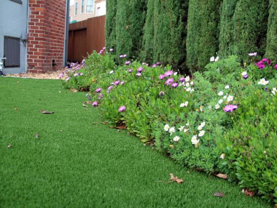 Artificial Grass Photos: Grass Carpet Waterflow, New Mexico Design Ideas, Front Yard Landscaping Ideas