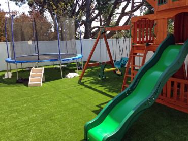 Artificial Grass Photos: Grass Installation Dora, New Mexico Design Ideas, Backyards