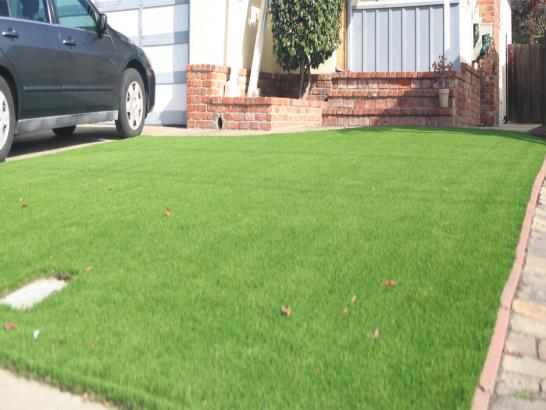 Artificial Grass Photos: Grass Turf Elephant Butte, New Mexico Backyard Playground, Front Yard Landscaping
