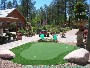 Grass Turf Lee Acres, New Mexico Landscaping, Backyard Designs artificial grass