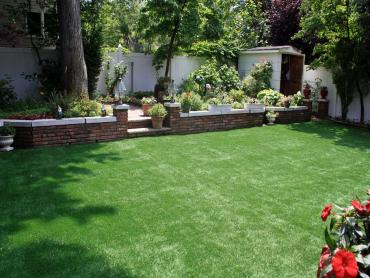 Green Lawn Sheep Springs, New Mexico Roof Top, Backyard Landscaping artificial grass