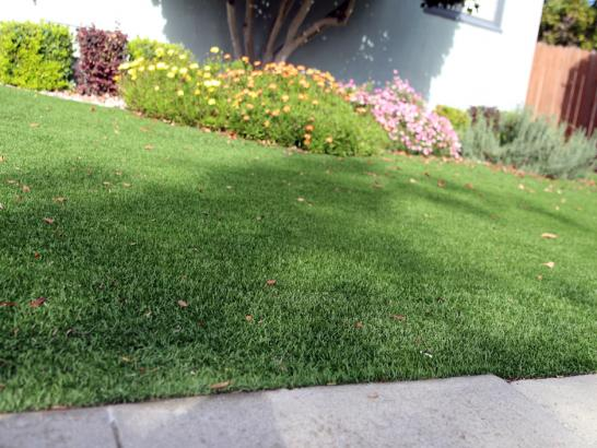 Artificial Grass Photos: How To Install Artificial Grass Fence Lake, New Mexico Garden Ideas, Front Yard Landscape Ideas