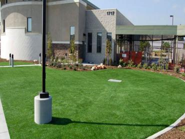 Artificial Grass Photos: How To Install Artificial Grass La Huerta, New Mexico Landscape Photos, Commercial Landscape