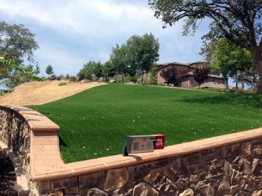 Artificial Grass Photos: How To Install Artificial Grass San Miguel, New Mexico Landscaping, Small Front Yard Landscaping