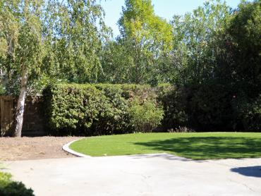 Artificial Grass Photos: Installing Artificial Grass Bosque Farms, New Mexico Landscape Ideas, Small Backyard Ideas