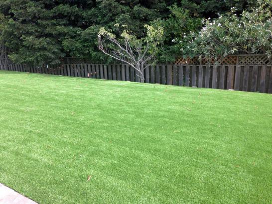 Artificial Grass Photos: Installing Artificial Grass Canon, New Mexico Landscape Photos, Backyard Design