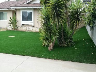 Artificial Grass Photos: Installing Artificial Grass Rio Rancho, New Mexico Garden Ideas, Small Front Yard Landscaping