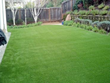 Artificial Grass Photos: Installing Artificial Grass Spencerville, New Mexico Rooftop, Beautiful Backyards