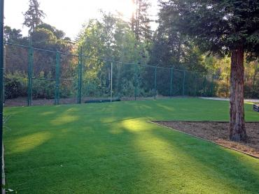 Artificial Grass Photos: Lawn Services Canjilon, New Mexico City Landscape, Parks