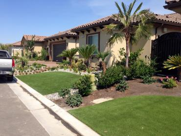 Artificial Grass Photos: Lawn Services Golden, New Mexico Landscaping, Front Yard Landscape Ideas