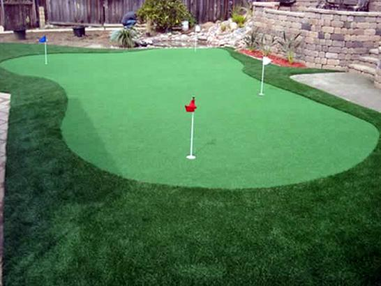 Artificial Grass Photos: Lawn Services Upper Fruitland, New Mexico How To Build A Putting Green, Backyard Ideas
