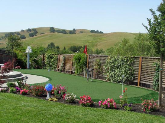 Artificial Grass Photos: Outdoor Carpet Lumberton, New Mexico Backyard Deck Ideas, Backyard Garden Ideas