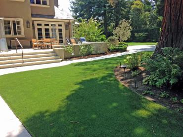 Artificial Grass Photos: Outdoor Carpet Pinehill, New Mexico Landscape Design, Backyard Ideas