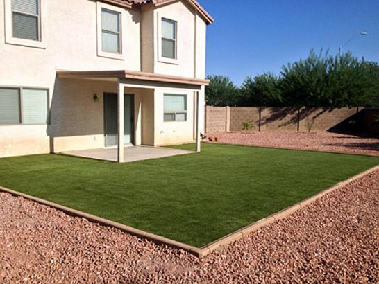 Artificial Grass Photos: Outdoor Carpet Raton, New Mexico Home And Garden, Backyard Ideas