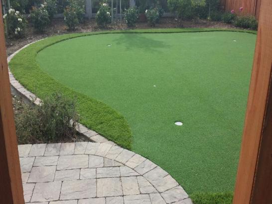 Artificial Grass Photos: Plastic Grass Escondida, New Mexico Diy Putting Green, Backyard Designs