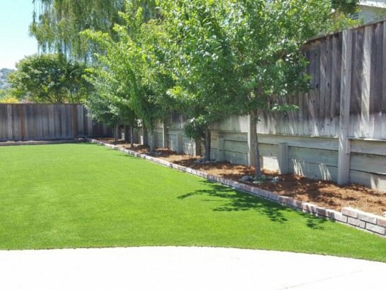 Plastic Grass Los Chaves, New Mexico Backyard Playground, Backyard Landscaping Ideas artificial grass