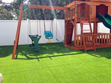Artificial Grass Photos: Plastic Grass Pinos Altos, New Mexico Lawns, Backyard Garden Ideas