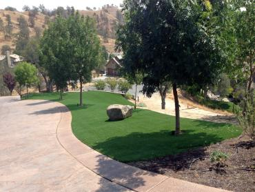 Artificial Grass Photos: Synthetic Grass Cost Alcalde, New Mexico Lawn And Garden, Front Yard Landscape Ideas