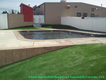Synthetic Grass Cost Cedro, New Mexico Home And Garden, Swimming Pool Designs artificial grass