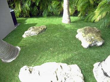 Artificial Grass Photos: Synthetic Grass Cost Chilili, New Mexico Rooftop, Backyard Landscape Ideas