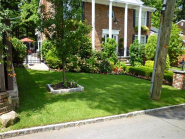 Artificial Grass Photos: Synthetic Grass Cost Ruidoso Downs, New Mexico Design Ideas, Front Yard Ideas