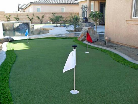 Artificial Grass Photos: Synthetic Grass Cost Weed, New Mexico How To Build A Putting Green, Backyard Makeover