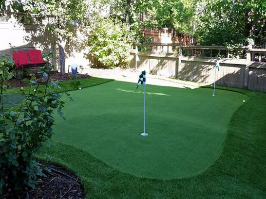 Artificial Grass Photos: Synthetic Grass Midway, New Mexico Lawn And Landscape, Backyard Landscaping Ideas