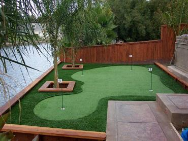 Artificial Grass Photos: Synthetic Grass Orogrande, New Mexico Putting Greens, Backyard Landscaping