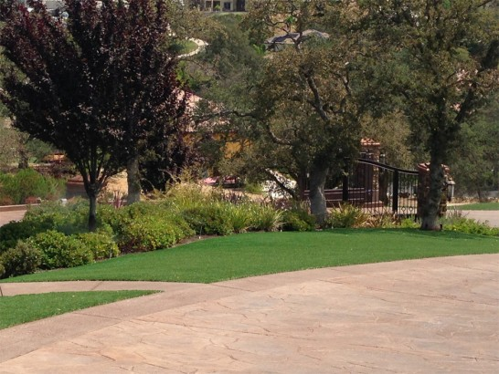 Artificial Grass Photos: Synthetic Grass Portales, New Mexico Landscaping Business, Backyards