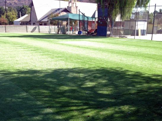 Artificial Grass Photos: Synthetic Grass Soham, New Mexico Landscape Design, Parks