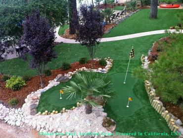 Synthetic Lawn Albuquerque, New Mexico Office Putting Green, Small Backyard Ideas artificial grass