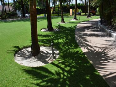 Synthetic Lawn Cundiyo, New Mexico Lawn And Landscape, Commercial Landscape artificial grass