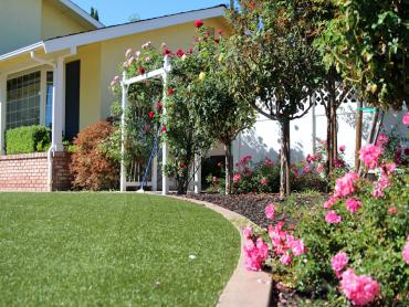 Artificial Grass Photos: Synthetic Lawn Isleta Village Proper, New Mexico City Landscape, Small Front Yard Landscaping