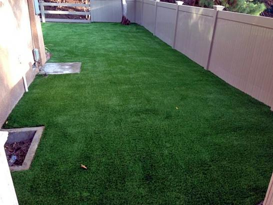 Synthetic Lawn Lake Sumner, New Mexico Dog Run, Backyard Garden Ideas artificial grass