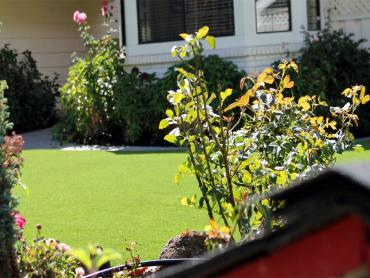 Artificial Grass Photos: Synthetic Lawn Monterey Park, New Mexico Rooftop, Front Yard Design