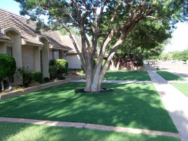 Artificial Grass Photos: Synthetic Turf Angel Fire, New Mexico Backyard Playground, Front Yard