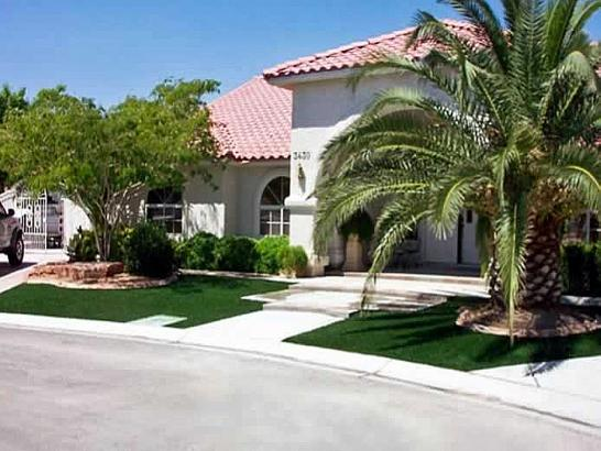 Artificial Grass Photos: Synthetic Turf Fort Sumner, New Mexico Lawn And Landscape, Front Yard Landscape Ideas