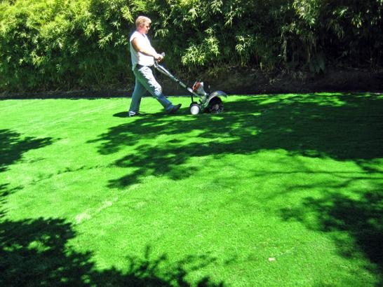 Synthetic Turf La Joya, New Mexico Landscaping Business, Backyard Makeover artificial grass