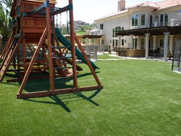Artificial Grass Photos: Synthetic Turf Lemitar, New Mexico Design Ideas, Backyard Landscaping Ideas