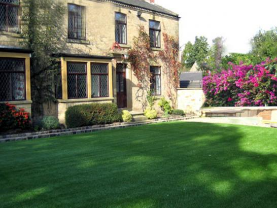 Artificial Grass Photos: Synthetic Turf Pastura, New Mexico Landscaping Business, Front Yard Ideas
