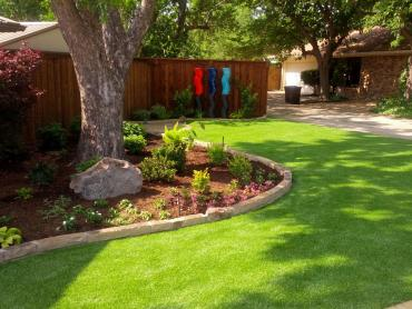 Artificial Grass Photos: Synthetic Turf Supplier Aragon, New Mexico Landscape Rock, Backyard