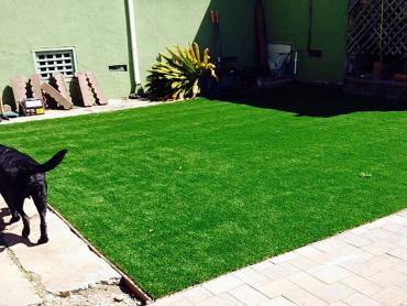 Artificial Grass Photos: Synthetic Turf Supplier Vado, New Mexico Watch Dogs, Backyard Makeover
