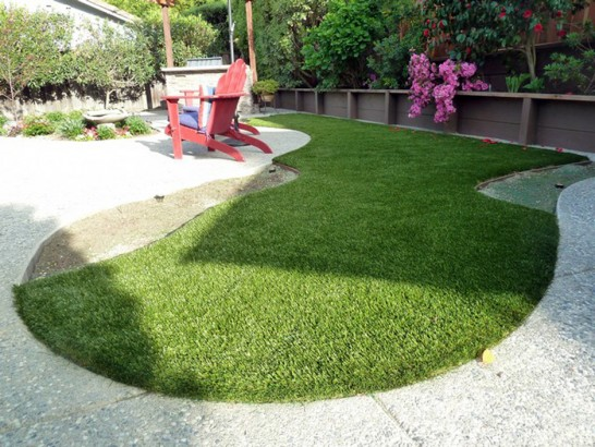 Turf Grass Anthony, New Mexico Dogs, Backyard Landscaping Ideas artificial grass