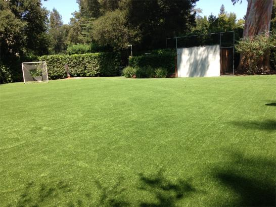Artificial Grass Photos: Turf Grass Bibo, New Mexico Soccer Fields, Backyard Garden Ideas