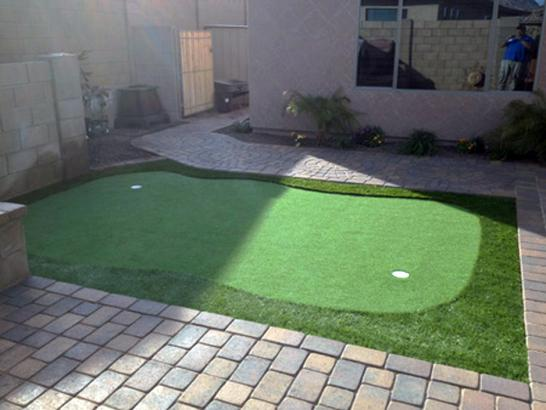 Artificial Grass Photos: Turf Grass Ruidoso Downs, New Mexico Best Indoor Putting Green, Backyard