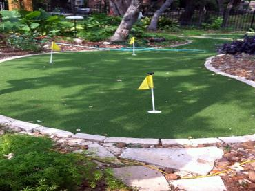 Artificial Grass Photos: Turf Grass San Acacia, New Mexico Landscaping, Small Backyard Ideas
